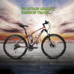 Wholesale Price Mountain Electric Bike -