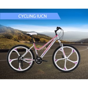 New Delivery for Lightweight Folding Bicycle -