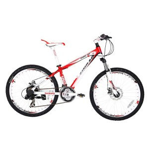 Discount wholesale Aluminum Alloy Folding Bicycle - CYCLING 450 – Sinbao